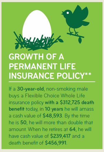 Whole Life Insurance Infographic