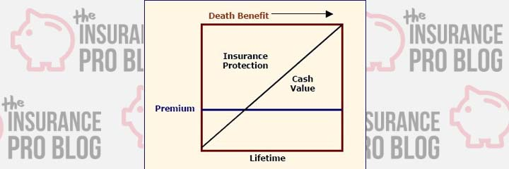 Cash Value Life Insurance General Design