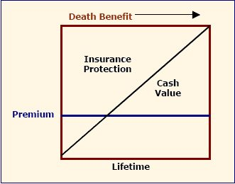 The Life Insurance Reserve