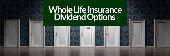 Everything you need to understand about whole life insurance dividend options