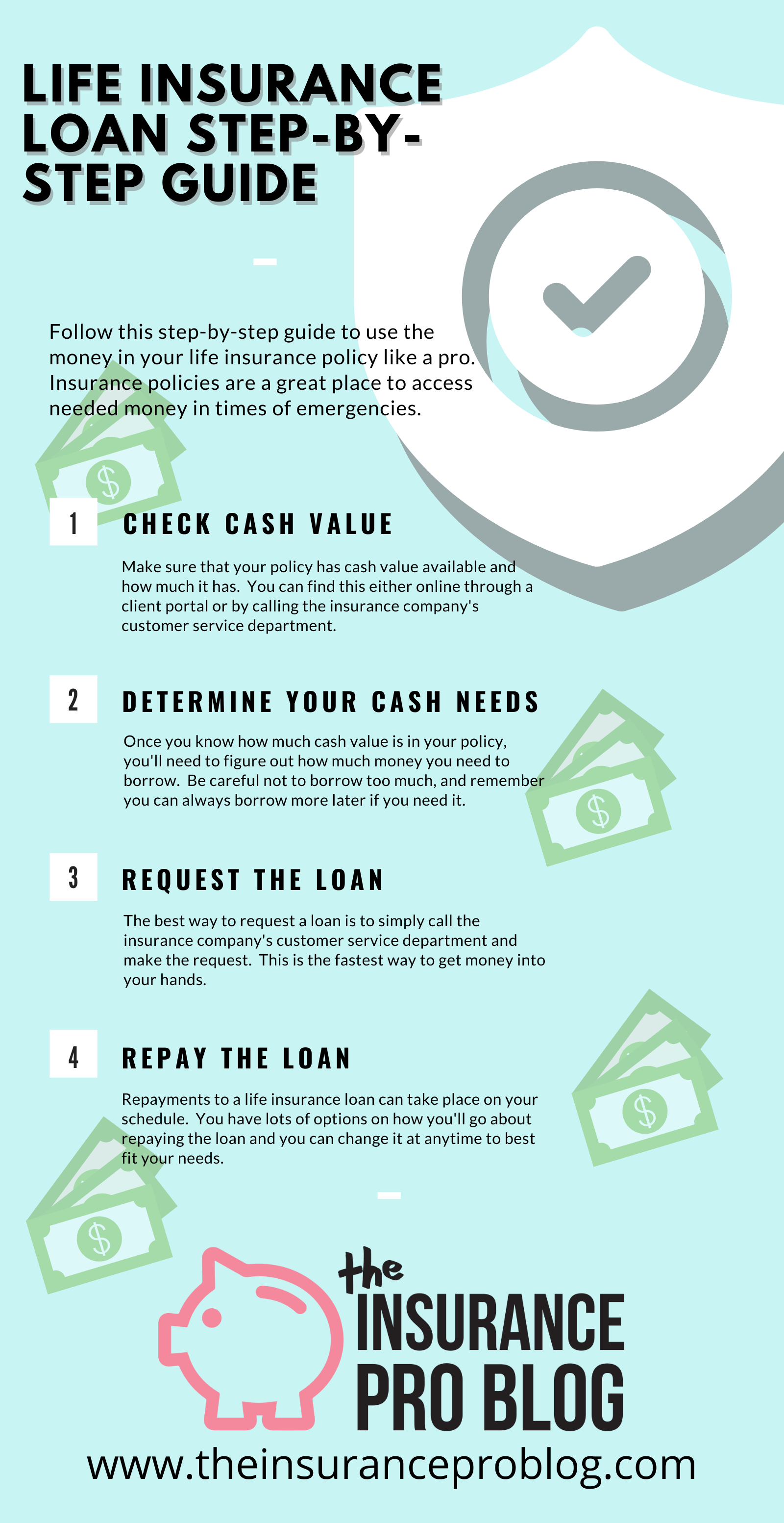 Life Insurance Loan Infographic