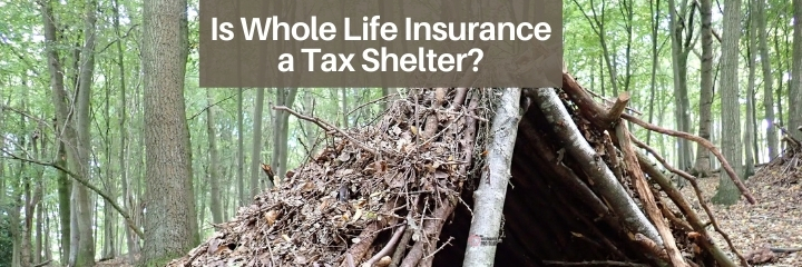 whole life insurance can be an effective tax shelter